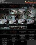Peachy Keen Films – Viva Execution