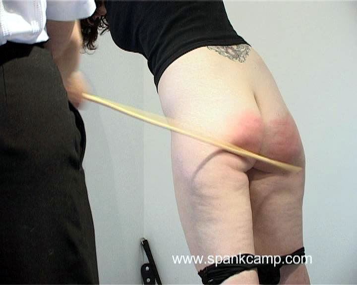SpankCamp – THEY'LL NEVER LEARN